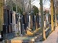 Juedischer Friedhof Mannheim 25 fcm.jpg