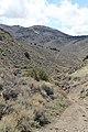 Jumbo Grade Trail - panoramio (9).jpg