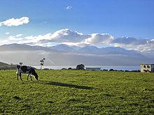 Rigardo sur la Kaikora Ranges de plataĵo ĉe Kaikoura