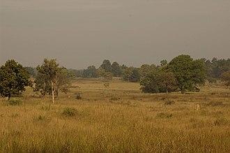 Kanha Tiger Reserve - Image: Kanha NP