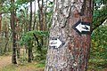 Karwia, nordic walking signs.JPG