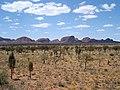 Kata Tjuta - Severní teritorium - panoramio.jpg