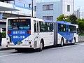 Keiseibus-twinbus-rear-20071013.jpg