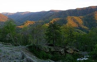 Black Mountain (Kentucky) - Black Mountain, April 2010