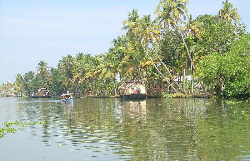Datei:Kerala Kuttanad1.jpg