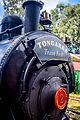 Kiama 0-4-0ST Locomotive b.jpg