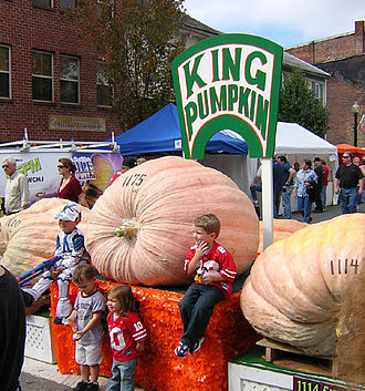 Barnesville, Ohio - King Pumpkin of the Barnesville Pumpkin Festival in 2008.