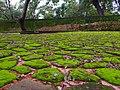 Kingdom Of Polonnaruwa.jpg