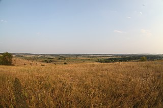 Kirsanovsky District District in Tambov Oblast, Russia