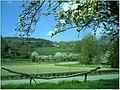 Kirschblüte - panoramio (15).jpg