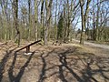 Klánovický les, Nové Dvory, rozcestí s houpačkou.jpg