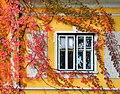 Klagenfurt Tarviser Strasse 96 herbstliche Villa Fenster 07102008 1197.jpg
