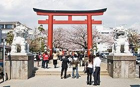 「神道 狛犬」の画像検索結果