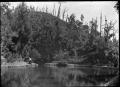 Korokoro Reservoir ATLIB 353620.png