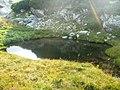 Lac glaciar - panoramio.jpg