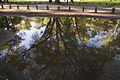 Lago de Regatas (7803043284).jpg