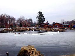 Lake in Mezhyhirya.jpg