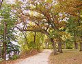 Lakeshore Path2 - Madison, WI.jpg