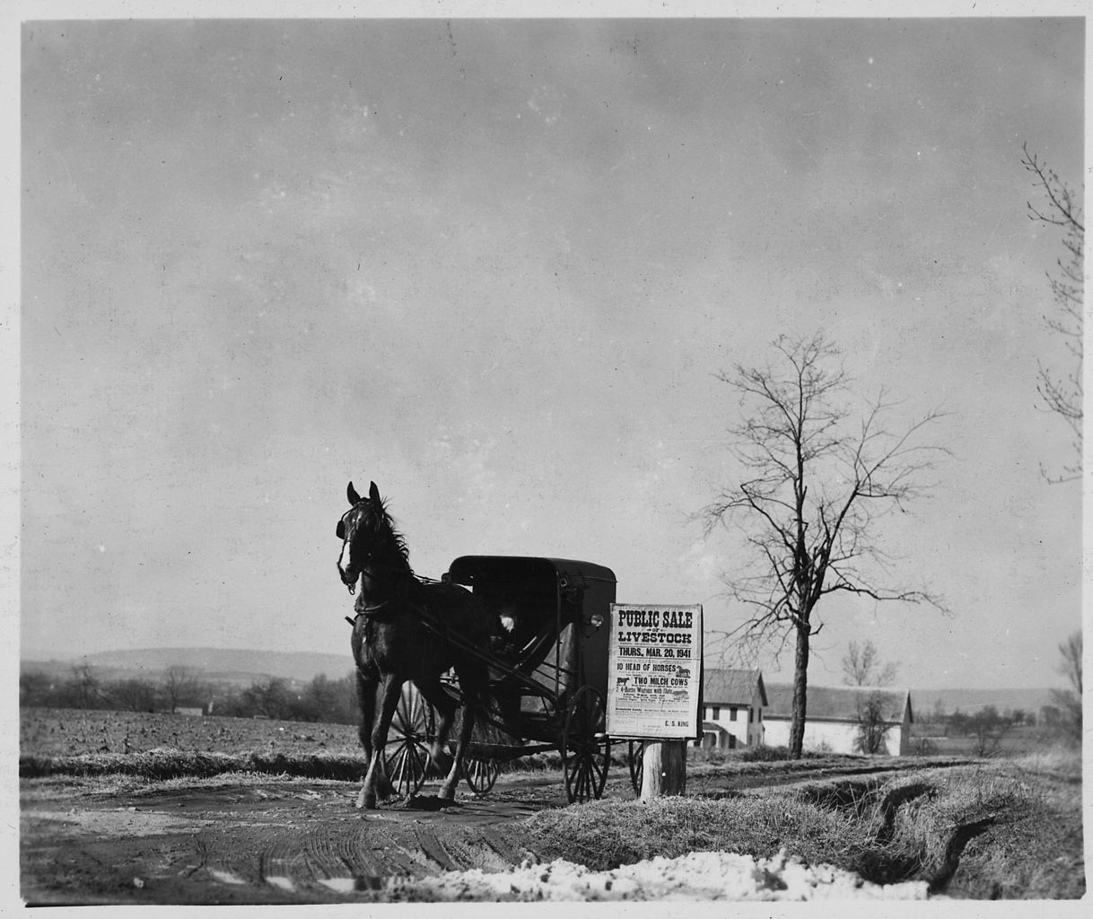 a brief history of the amish culture Amish - history, significant  confrontations in several other states led to arrests and brief stints in jail  the riddle of amish culture.