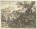 Landschap met boom met blootgelegde wortels, RP-P-1885-A-9567.jpg