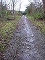 Lane behind the White Horse - geograph.org.uk - 1060095.jpg