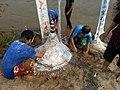 Laos-10-110 (8685831421).jpg