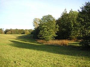 Quellgebiet bei Hirrweiler (Naturschutzgebiet Enzwiese)