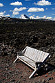 Lava Field Bench (Deschutes County, Oregon scenic images) (desDB1764).jpg