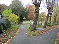 Left hand graveyard path at Hawarden St Deiniol - geograph.org.uk - 629134.jpg