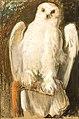 Leon Wyczółkowski - Sowa 1905.jpg