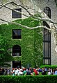 "Lexington Kentucky - Keeneland Race Track ""Paddock - Ivy & Sycamore Tree"" (2147783798) (2).jpg"