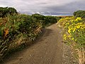 Lhergycolvine Road. Isle of Man. - geograph.org.uk - 39722.jpg