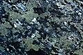 Lichen (6473123391).jpg