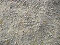 Limestone of Kallidaikurichi.jpg