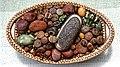 Lithops, living stones, at Nuthurst, West Sussex, England 2.jpg
