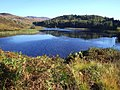 Loch Duartmore - geograph.org.uk - 66120.jpg