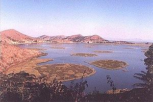 Floating island - Circular phumdis, called athampum, were artificially built for fishing in Loktak Lake