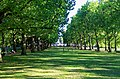 London - Green Park - View SE towards Victoria Memorial.jpg