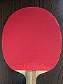 Long pips table tennis rubber on racket.jpg