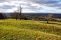 Looking over a field on Leckhampton Hill - geograph.org.uk - 1755134.jpg
