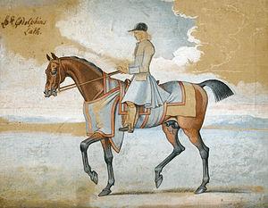 Godolphin Arabian - Lord Godolphin's Lath (James Seymour)