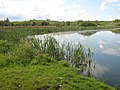 Lough at Tullynagee - geograph.org.uk - 437628.jpg