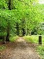 Lubostroń, park, ok. 1800l.JPG