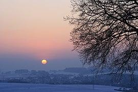 Lutherbuche im Winter...2012 Januar 1929WI.jpg