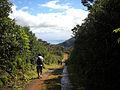 Macchabée Trail (4823302179).jpg
