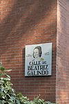 Madrid Calle de Beatriz Galindo 071.jpg