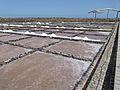 Marine water saline - Salinas del Carmen - Museo de la Sal - Fuerteventura - Canary islands - Spain - 11.jpg