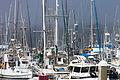 Masts in the Mist - Flickr - Joe Parks.jpg