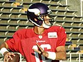 Matt Cassel 2014 MV TC.jpg