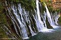 McArthur-Burney Falls Memorial State Park, California (23320532465).jpg
